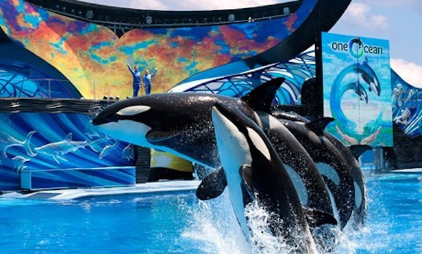 Blackstone Exits SeaWorld Stake with Sale to Zhonghong