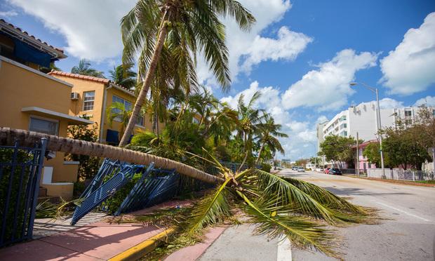 City of Miami Beach, South Beach after Hurricane Irma. Credit: Mia2you/Shutterstock.com.